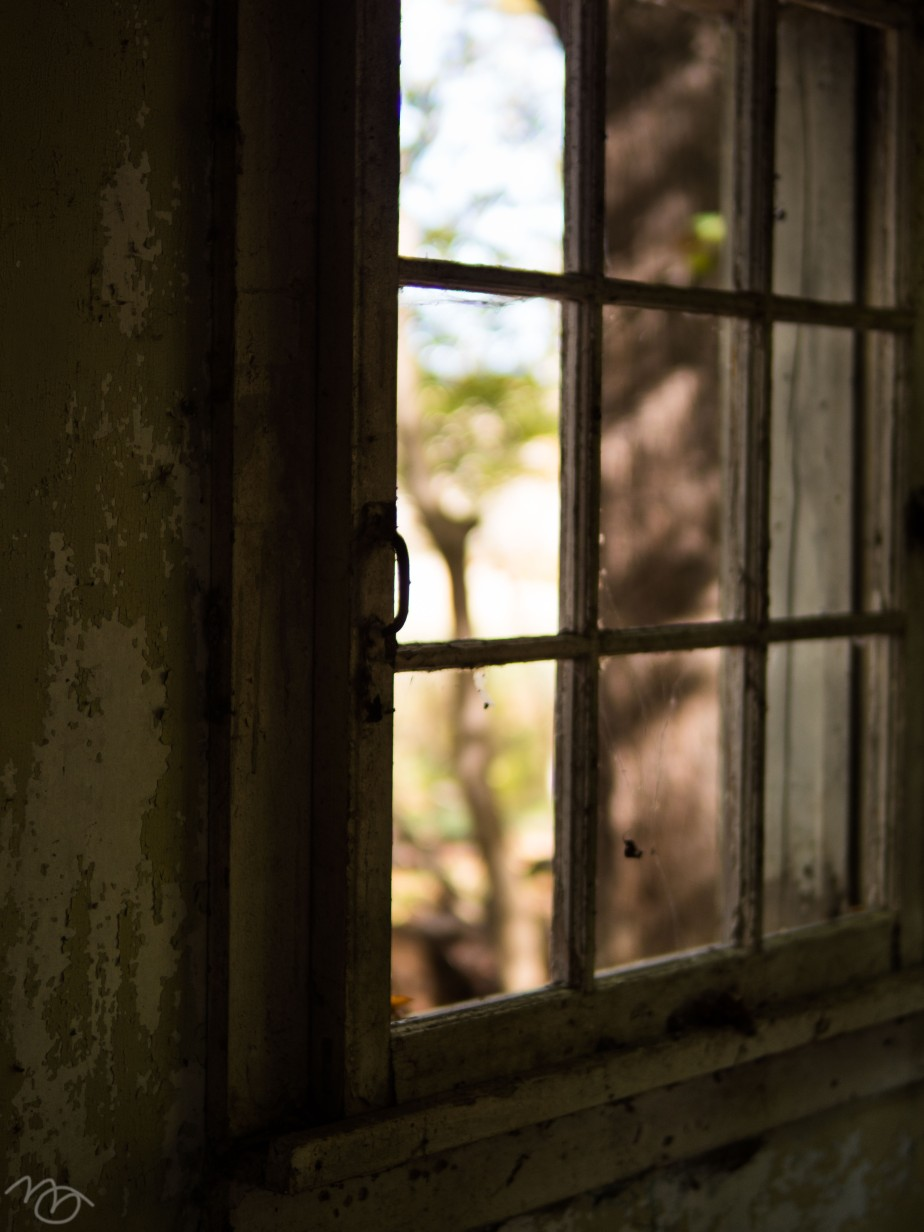 5_Window